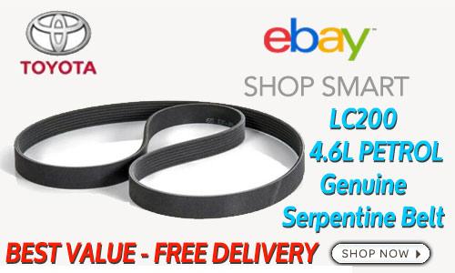 ad-46L-serp-belt-ebay