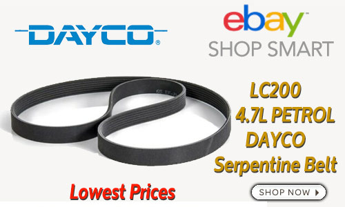 ad-47L-serp-belt-dayco-ebay
